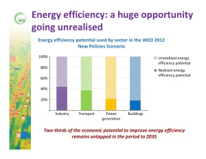 The IEA notes there is massive untapped potential to make savings through energy efficiency